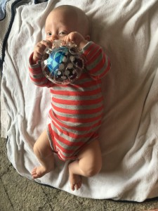 Emily loves the rubber jingly ball. Another winner! It is super sticky and easy to grab.